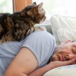 Spavanje I njegovi poremećaji