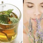 Čaj  protiv gorušice i gasova