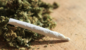4marijuana_stockphoto