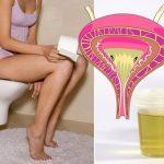 Super lek protiv urinarnih infekcija