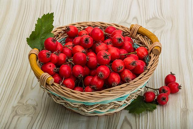Hawthorn berries in the bowl on wood background