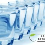 Voda: osnova za zdravlje