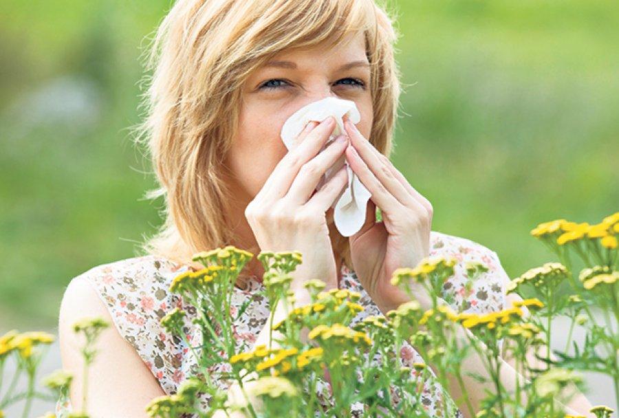alergija-polen-ambrozija-kijanje