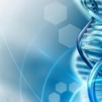 Naučnici otkrili čudotvorni gen: Oporavlja srce i leči rak