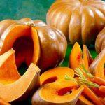 Koristi jesenjih plodova