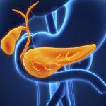Masnoće i alkohol nagrizaju pankreas
