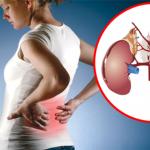 Kako prepoznati bolesne bubrege