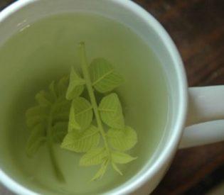 Lekovite strane čaja od oraha