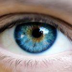 Namirnice koje čuvaju vid