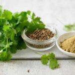 Korijander -Super lek za lečenje dijabetesa