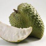 Graviola- biljka koja je jača i od hemoterapije