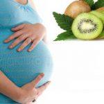 Koliko je kivi bitan u trudnoći