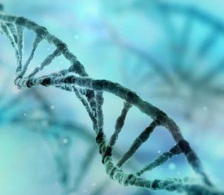 Naučnici uzbuđeni zbog otkrića gena povezanih s Alchajmerom