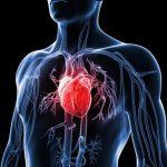 Simptomi i znaci hipertrofije srčanog mišića