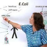 Kako se leči Ešerihija coli