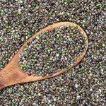Lekovite strane konopljinog semena