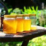 ČUDO IZ PRIRODE! 15 FASCINANTNIH činjenica o medu: Posle ovoga, uvrstićete ga u omiljene namirnice!