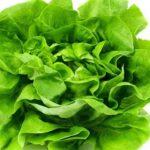 Jedite svaki dan zelenu salatu a evo i zašto