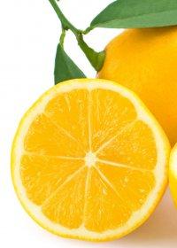 24733_vitamini-shutterstock_74115736_kul