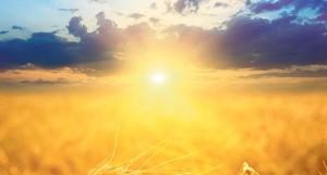 sunce-jesen-leto-zito-sumrak-vece-1362995370-280359